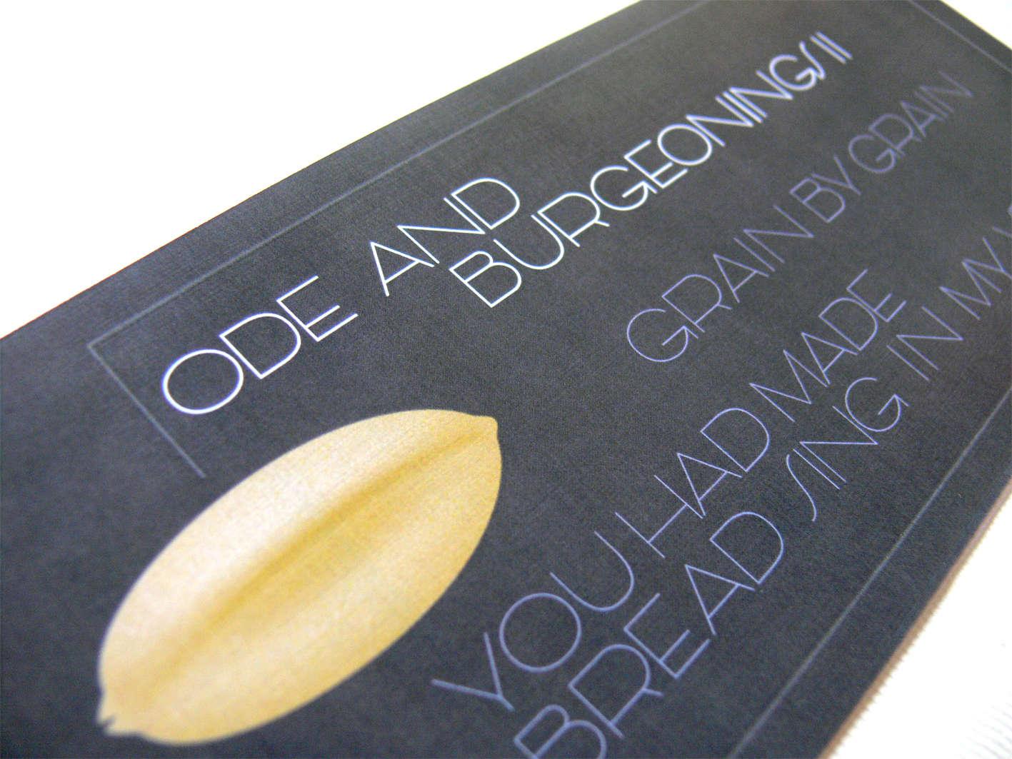 Tipografía para la bodega Ode Winey con lel sistema gráfico inspirado en el trigo y las uvas